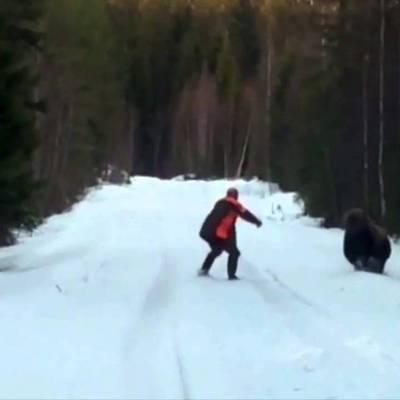 Что делать если на Вас напал дикий медведь - (ВИДЕО)