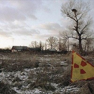 У китайцев появились планы на Чернобыльскую зону