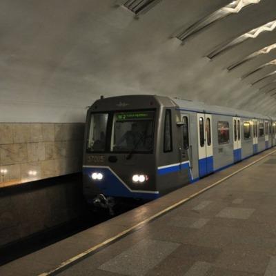 В петербургском метро полицейские поймали голую женщину (фото, 18+)