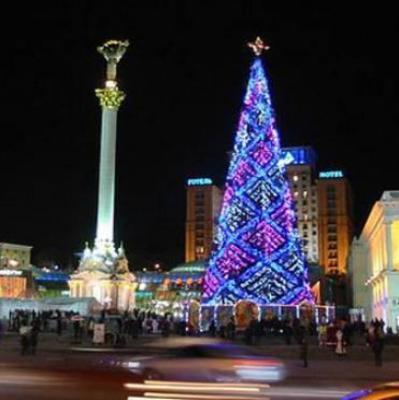 На Прикарпатье выбрали главную елку страны