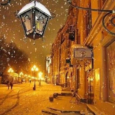 Хвойды велкам: Во Львове открыли «Хвойдарню»