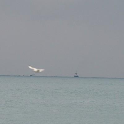 На дне Черного моря найдены обломки российского Ту-154