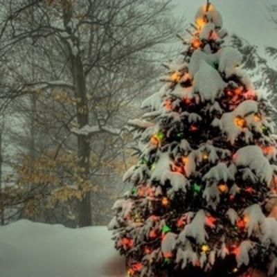 В Укргидрометцентре рассказали, какой будет погода на новогодние праздники
