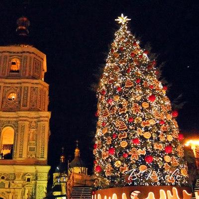 Сколько человек встретили Новый 2017 на Софийской площади