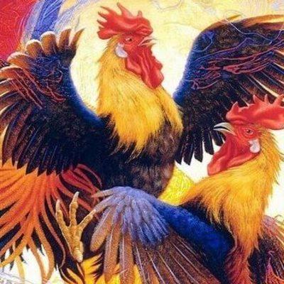 Гороскоп на 2017 год Огненного Петуха для всех знаков зодиака