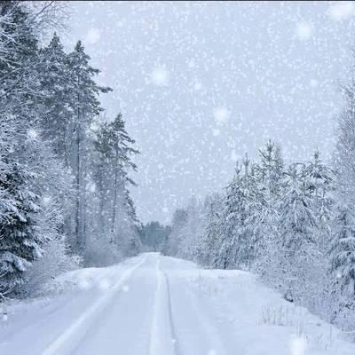Гидрометцентр рассказал, какие области занесет снегом больше всего