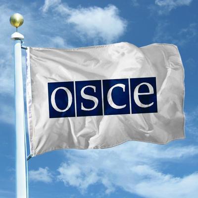 Стали известны результаты экстренного заседания ОБСЕ по Авдеевке