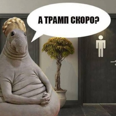 Украинцы смеются над встречей Тимошенко и Трампа у туалета (фото)