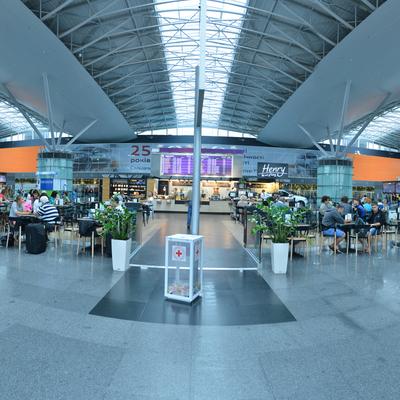 Аэропорт Борисполь разработал программу удешевления авиабилетов
