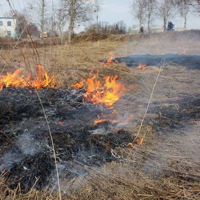 Спасатели предупредили об опасности пожаров в отдельных областях Украины
