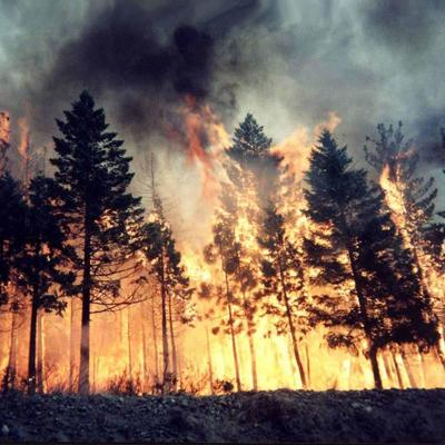 ГСЧС предупреждает о пожарной опасности в шести областях