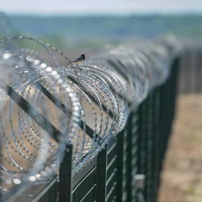 Польша построит забор на границе с Украиной и Беларусью