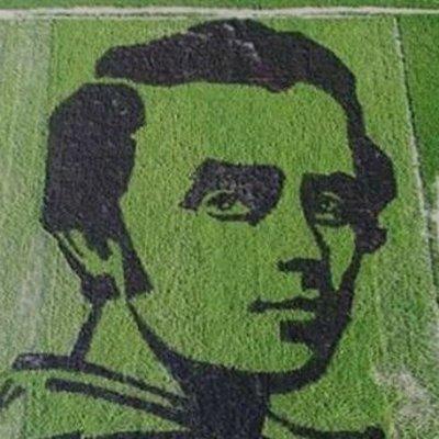 Украинцы вырастили из риса гигантский портрет Тараса Шевченко