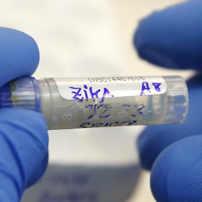 Вирус Зика может поразить Азию и Африку