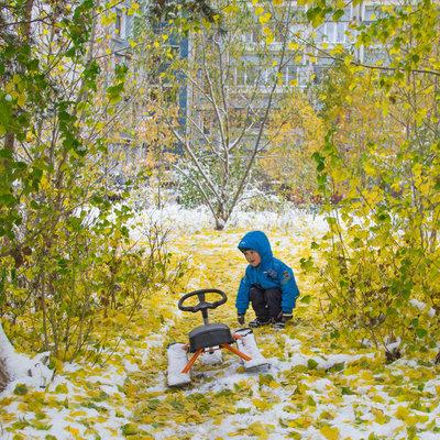 Зимняя осень: украинцев ждут снег и похолодание
