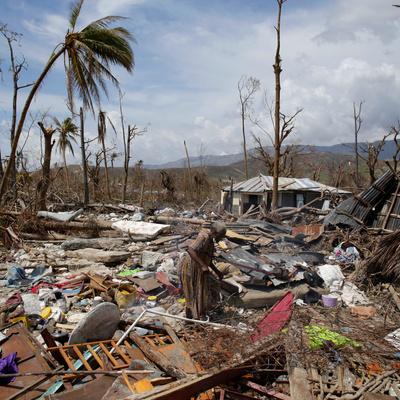 Число погибших в результате урагана