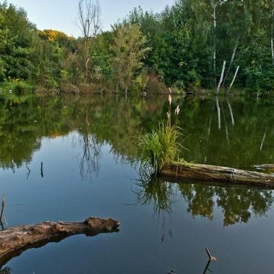 В Киеве появится новый парк отдыха с каскадами озер