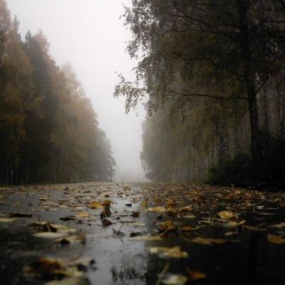 Одесский шторм движется на Киев