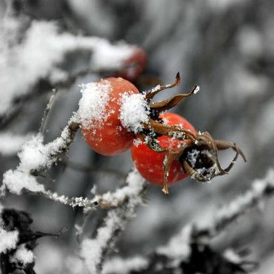 В Украине 17-19 октября ожидается похолодание