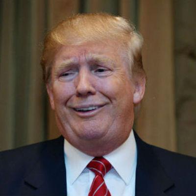 Обнаружен фазан, похожий на Дональда Трампа (фото)