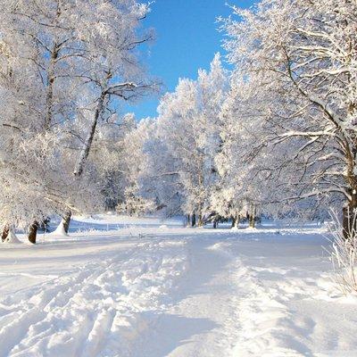 Снегопад в Киеве: КГГА призывает водителей пересесть на автобус