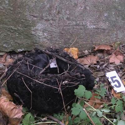 В центральном парке Одессы нашли обгоревший труп в инвалидной коляске (фото)