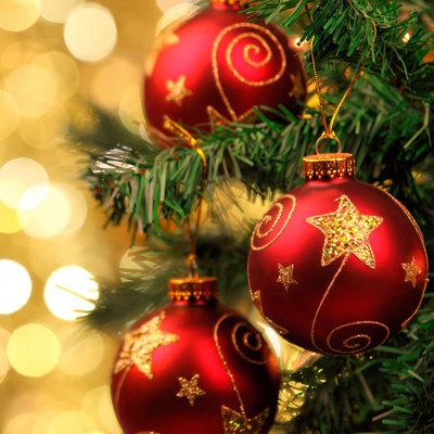 В столице украсили главную новогоднюю елку страны (Фото)