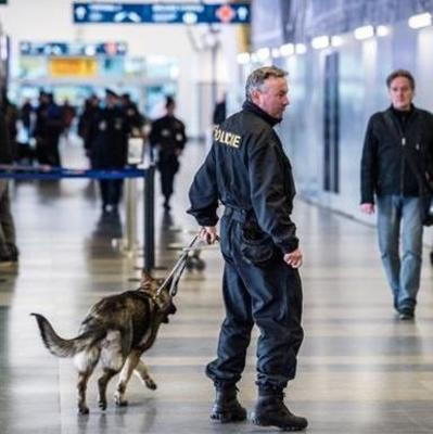 В аэропорту Праги обезвредили подрывника