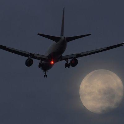 В России произошло ЧП с пассажирским самолетом (видео)