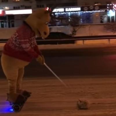 Соцсети рассмешило видео с оленем на киевском проспекте (видео)