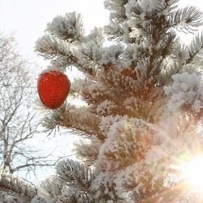 На Украину надвигается потепление, осадки и порывистый ветер