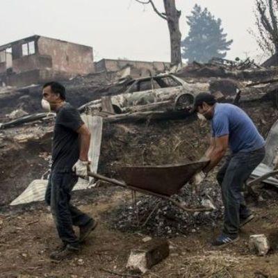 В Чили сильнейшие лесные пожары уничтожили город