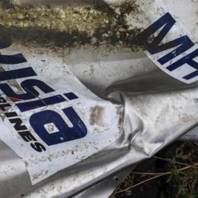 Нидерланды не могут установить подлинность переданных РФ снимков по делу MH17
