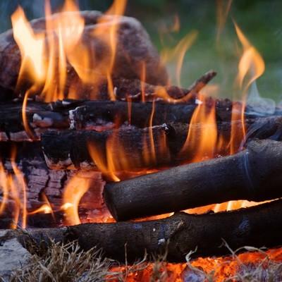 В Киеве на майские праздники ожидается высокая пожарная опасность