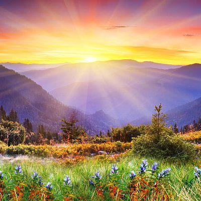 Сегодня Всемирный день охраны окружающей среды