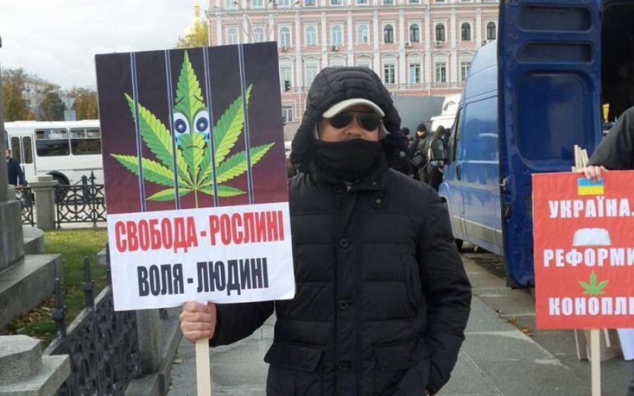 В петиция марихуаны легализация россии грунт для марихуаны нужен какой