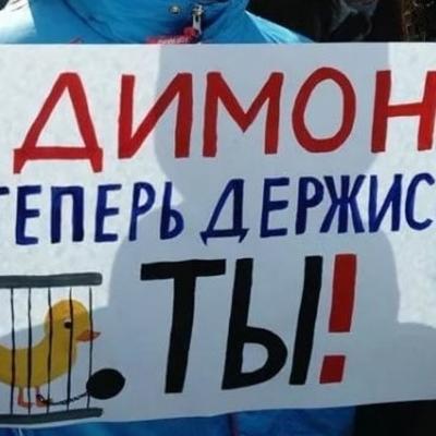 В России студентка защитила диплом по теме «Он вам не Димон»