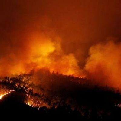 Масштабные пожары в Португалии уже забрали 25 жизней: фото и видео