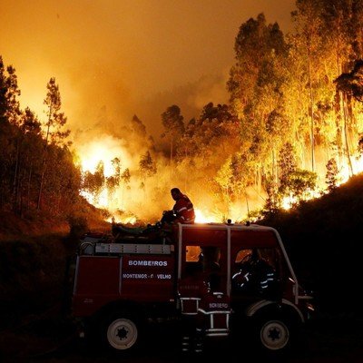 Число жертв лесных пожаров в Португалии стремительно растет