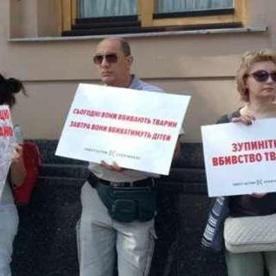Украина без живодеров: зоозащитники митингуют под Радой (фото)