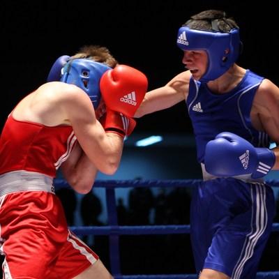 Украина показала отличный результат на чемпионате Европы по боксу