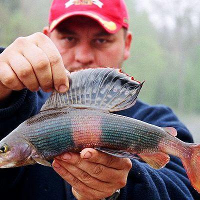 Стало извествно о местах в Киеве с бесплатной рыбалкой