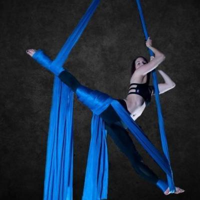 Известная воздушная гимнастка сорвалась во время выступления