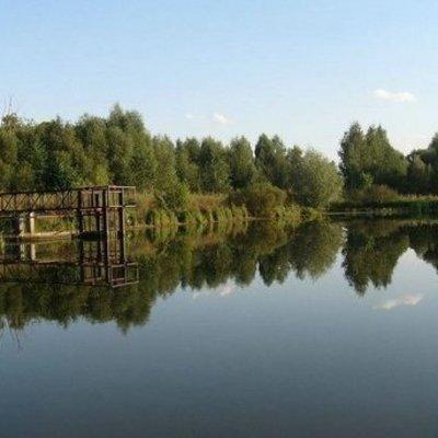 Смертельные соревнования: в Черниговской области в пруду утонул ребенок