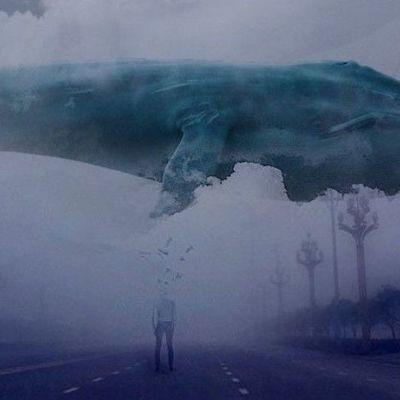 «Синие киты»: на Донбассе застрелился 19-летний силовик