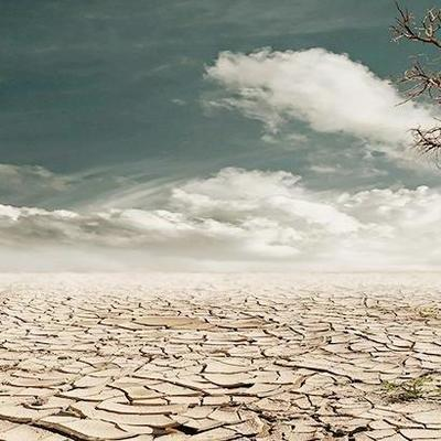 За 7 месяцев человечество исчерпало годовые ресурсы Земли