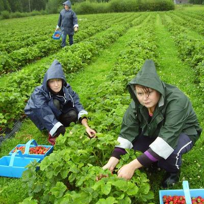 В Польше увеличился запрос на работников из Украины