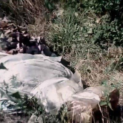 Парень молотком забил до смерти работодателя и закопал в поле (фото, видео)
