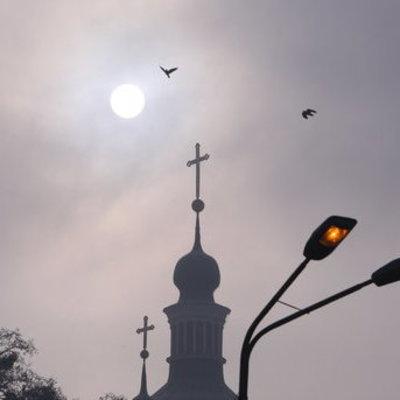 Киевлян предупредили о смоге и посоветовали есть апельсины