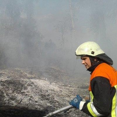 Под Киевом массово горит мусор (фото)